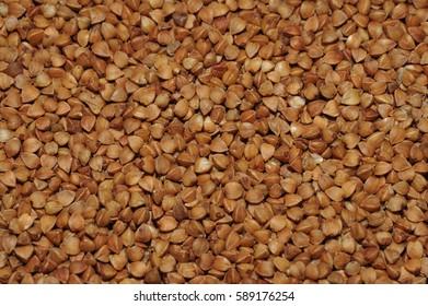 Dried buckwheat