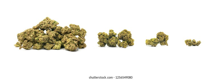 Dried Cannabis Piles in Standard Weight Incraments - 1 Ounce (oz), 1/4 Ounce (quarter), 1/8 Ounce (eighth), Gram (g) marijuana on white background.