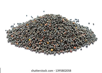 Dried canola seeds isolated on white. Bunch of rape seeds on a white background. Rapeseed (canola) seeds. Close-up. Collected rapeseed seeds isolated on white background. Side view.