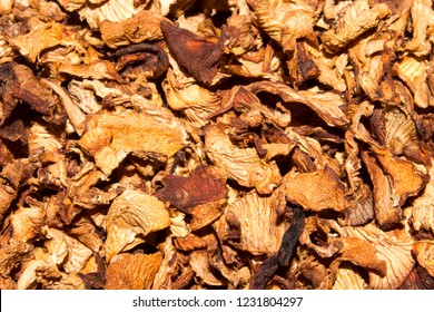 Dried chanterelle mushrooms.Background of chanterelles.Texture of mushrooms.