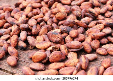 Dried cocoa beans in grenada