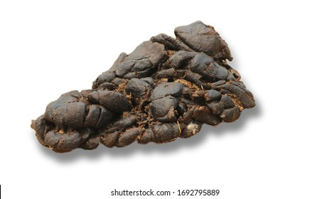 Dried cow dung on a white background
