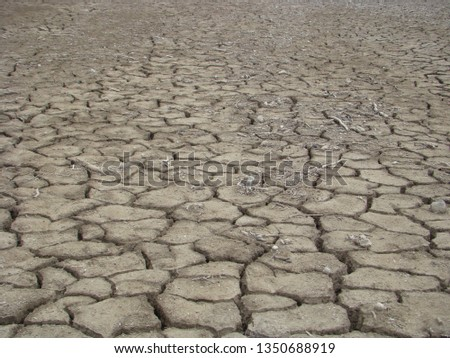 A Dried And Cracked Desert Floor in rann of Kutchh