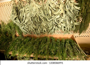 Dried eucalyptus and rosemary traditional&tropical Madeira