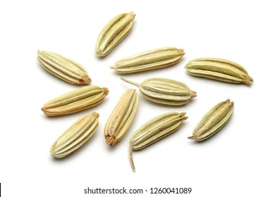Dried fennel seeds isolated on white background, macro shot