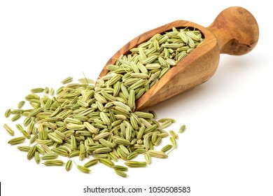 dried fennel seeds in the olive wood scoop, isolated on white