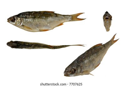 Dried fish in all projections on white background