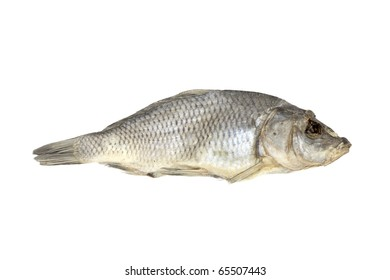Dried fish allocated on a white background