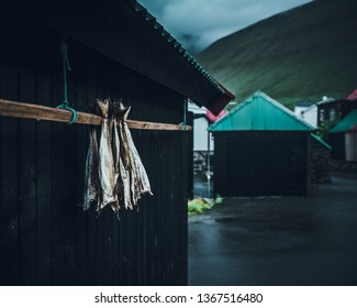 Dried fish hang on a wooden pole on the side of a fishing shack in the Faroe Islands