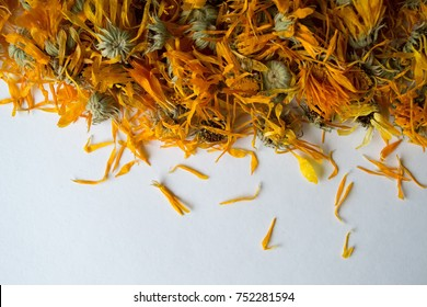 Dried flowers are calendula on a white background. Top view