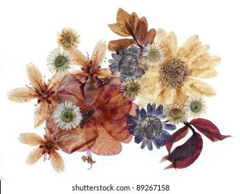 Dried flowers composition