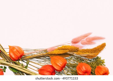 dried flowers and herbs, physalis. space for text or image