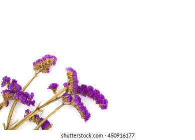 Dried flowers, statice, white background