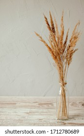dried flowers in a vase on a gray background. dry grass in a transparent vase. gray textured wall. white frame on a gray background. black frame on gray background. empty frame.