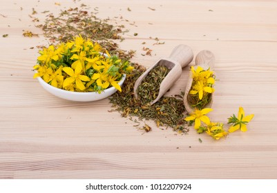 dried and fresh, flowering St. John's wort with bowl and spoons on a wooden background