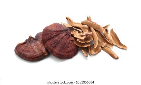 Dried Ganoderma Lucidum Mushroom isolated on white background.Ling Zhi Mushroom.