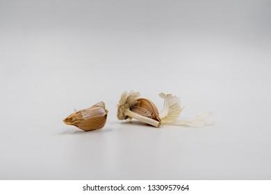 Dried garlic on white background