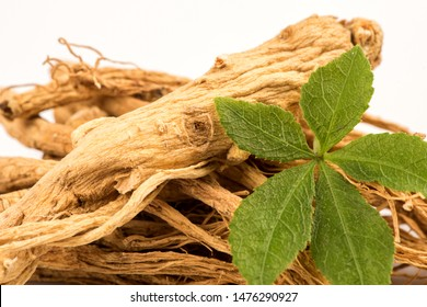 Dried Ginseng and green leaf on white background.