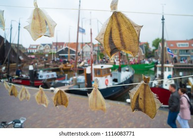 dried goatfish on a line in the Urker fishing harbor in the netherlands