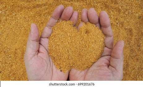 Distiller's dried grains with solubles (DDGS) are the nutrient rich co-product of dry-milled ethanol production. Its utilization as a feed ingredient energy and a protein  is showing on man's hand