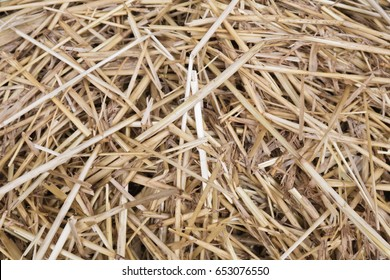 dried grass straw texture pattern motif background