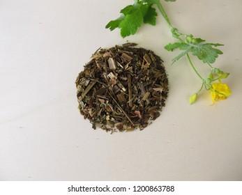 Dried greater celandine, Chelidonium majus