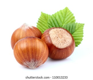 Dried hazelnuts with leaf