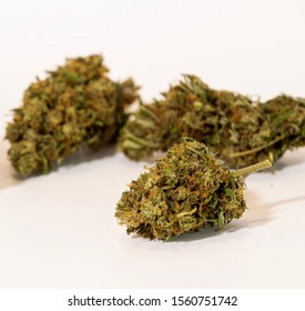 Dried hemp buds on white background with shallow depth of field. Product shot for web concept. Commercial hemp farming to produce CBD and other beneficial products. Cannabis buds isolated.