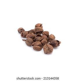 Dried Herbs, Anatto tree,Bixa orellana Linn.,BIXACEAE