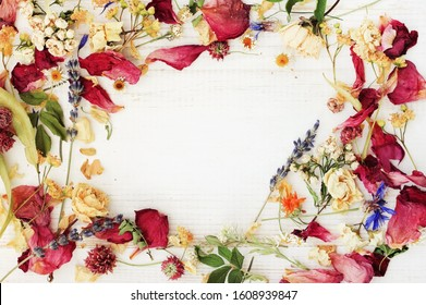 Dried herbs mix, floral petals framed top view background, holistic botanical therapy for healthy beauty & skin care.