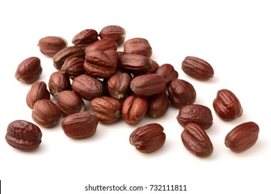 dried jojoba seeds isolated on white