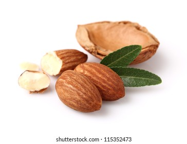 Dried kernel of almonds