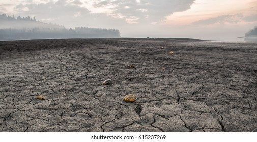 Dried lake and cracked earth, Slovakia, Scallops on the ground.