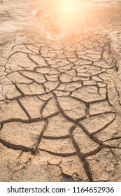 Dried land with cracked soil with flare from the background