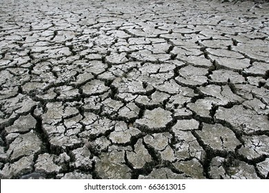 Dried land as result of a climate change