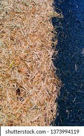 Dried leaf on asphalt road, Texture background
