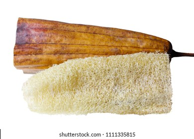 Dried loofah (luffa) fruit used as scrubbing sponge