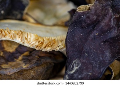 Dried mixed wild mushrooms macro close up texture and details.