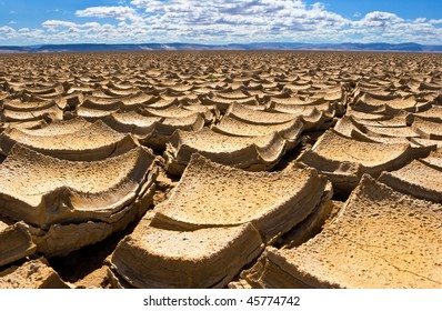 Dried mud on the Alvord Desert