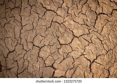 dried mud on hut