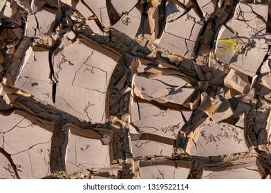 Dried Mud In Texas. Santa Elena Canyon And Rio Grande in Big Bend National Park