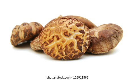 Dried mushrooms isolated on a white background