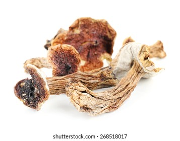 Dried mushrooms isolated on white