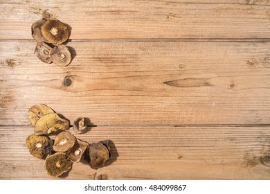 Dried mushrooms on a wooden table
