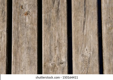 Dried old weathered wooden boards as background