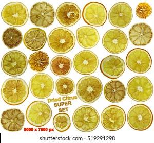 Dried oranges, grapefruit, mandarin, lemon and lime fruit isolated set packaging design composition on white background illustration. 30 dry citrus yellow, red, orange slices.