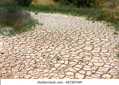 Dried out creek bed in an arid area of sparse rainfall and drought stricken earth due to climate change.