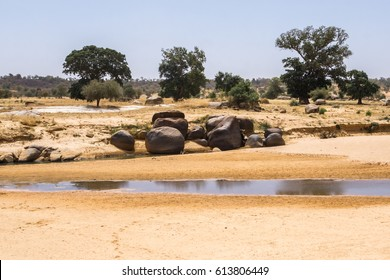 Dried out river bed of the Niger River, Niger, West Africa
