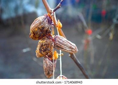dried persimmons kaki fruits hung on the branch