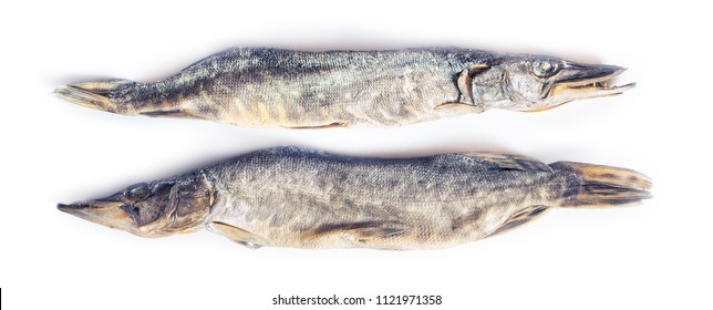 dried pike fish on white